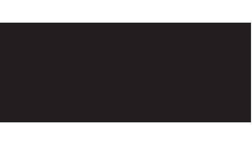 asenov trans logo